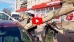 Муж из-за злости залил машину жены бетоном